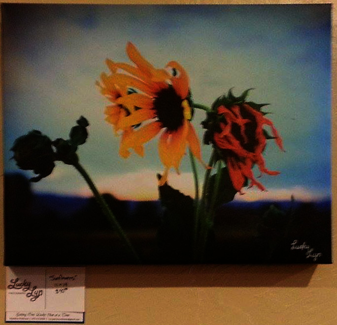 Lucky Lyn, local artist exhibit at Camilla's Kaffe in Fruita, Colorado